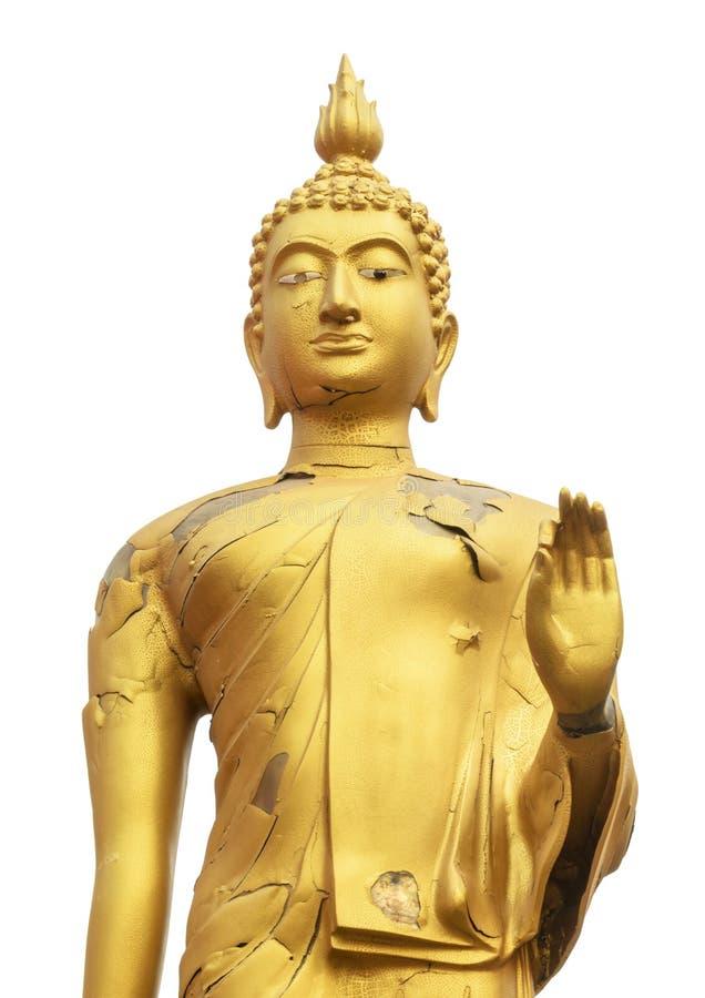Crack skin buddha isolate on white royalty free stock photo