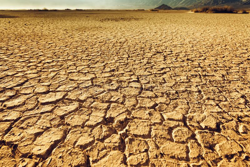 Cracked and arid soil stock photo. Image of land, drought ...
