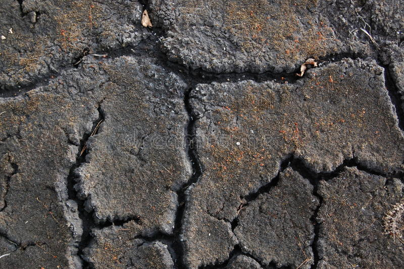 Cracked barren land stock images