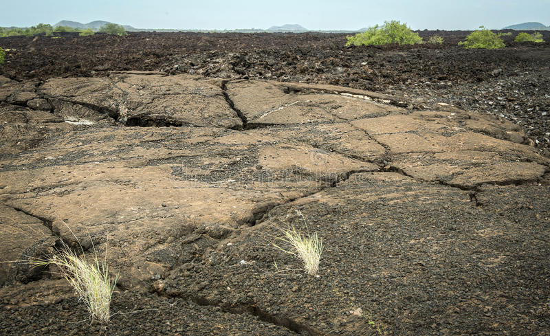 Cracked black lava in Tsavo West Reserve royalty free stock photos