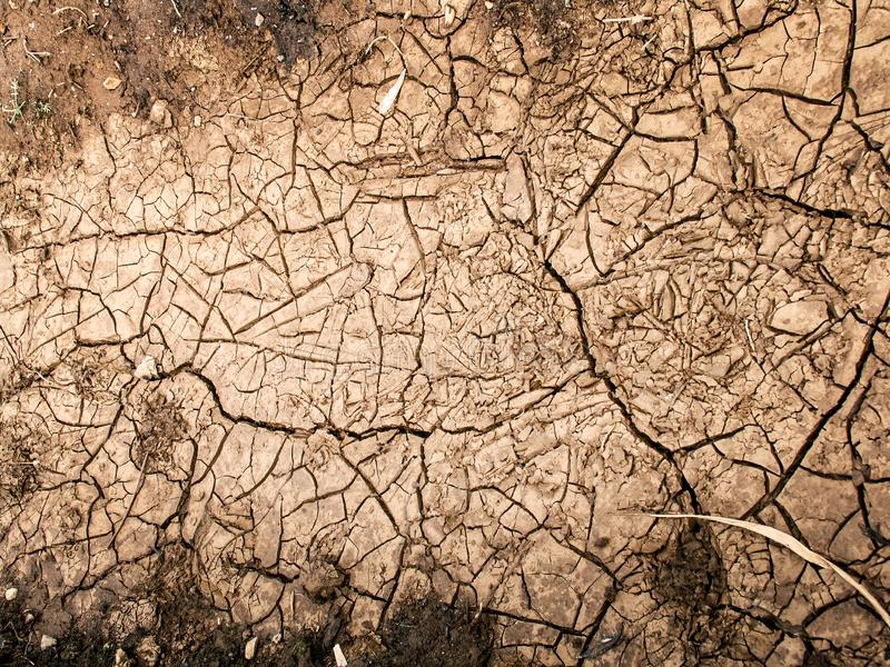 Cracked clacracks in dry ground. Cracked clay ground into the dry season royalty free stock photography
