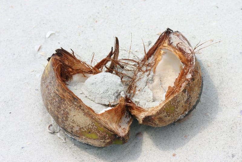 Cracked Coconut Free Stock Photos