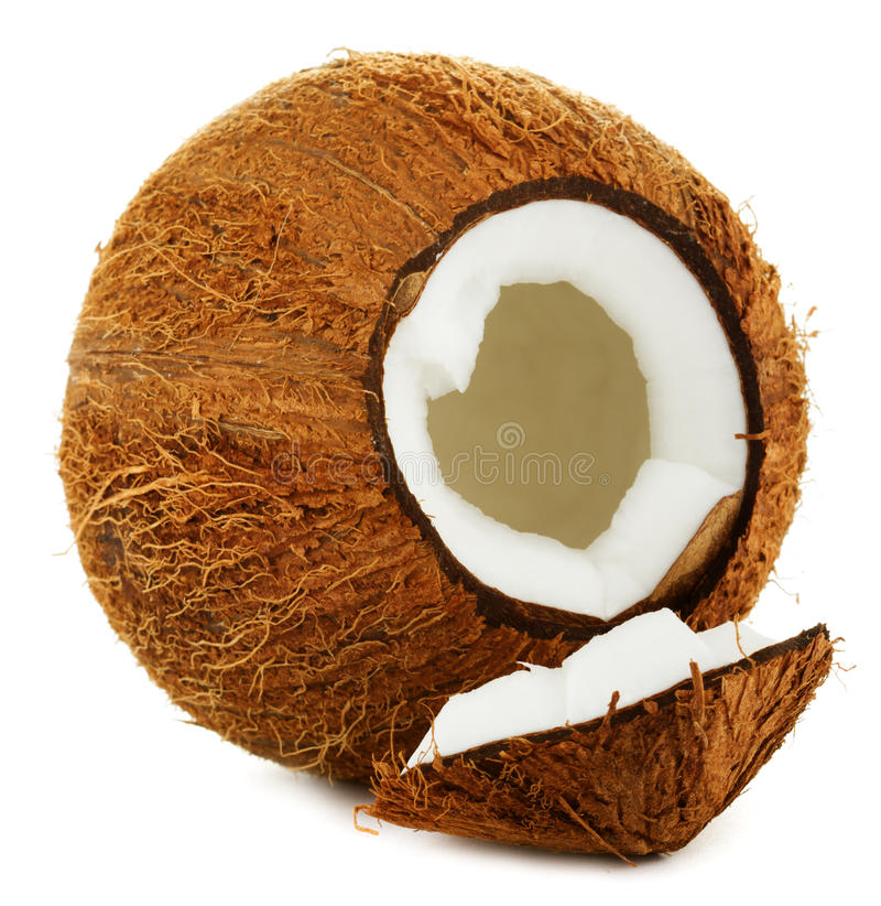 Download Coconut stock photo. Image of seeds, hard, diet, nutrient - 29876864