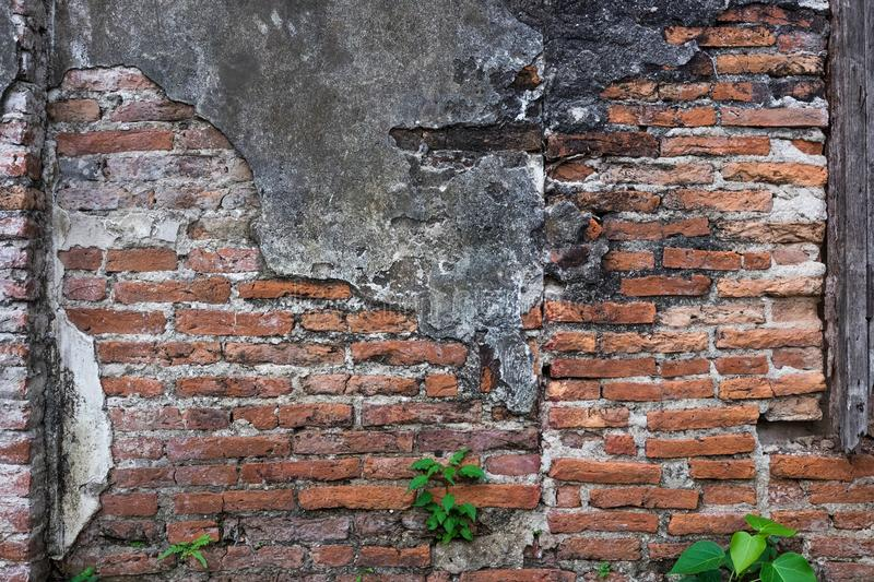 Decayed brick wall texture background. stock images
