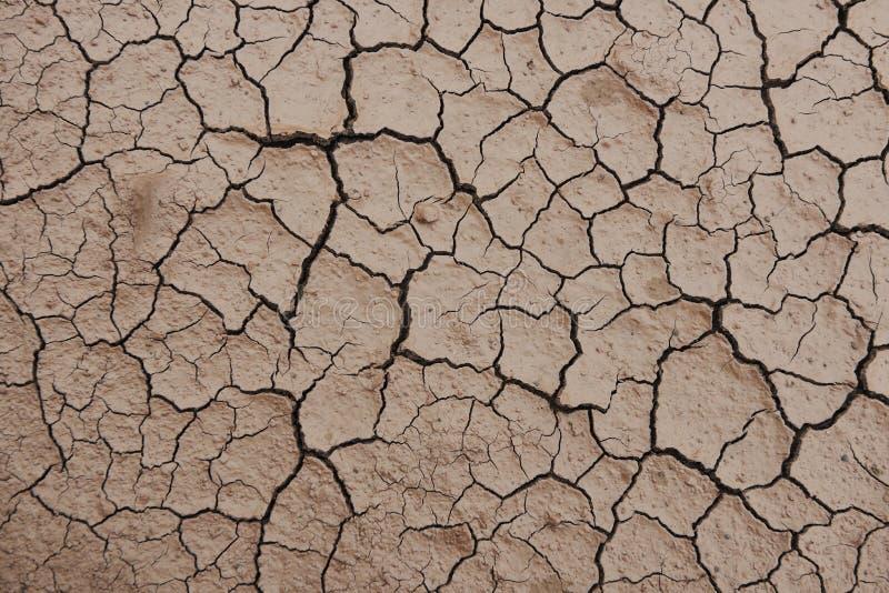 Cracked Desert Background Texture