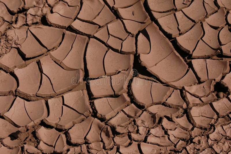 Cracked Dried Mud royalty free stock photo