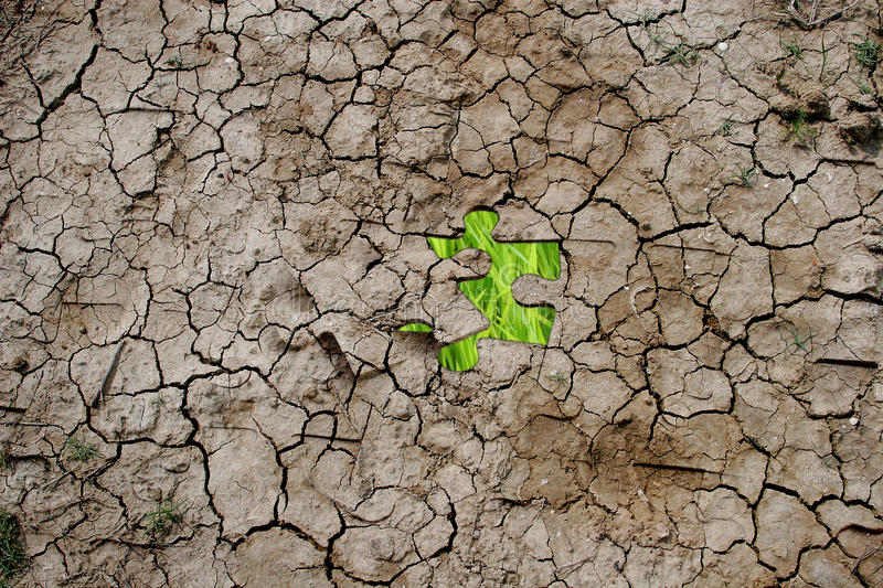 Cracked dry earth as a puzzle. (with green grass as one piece royalty free stock images
