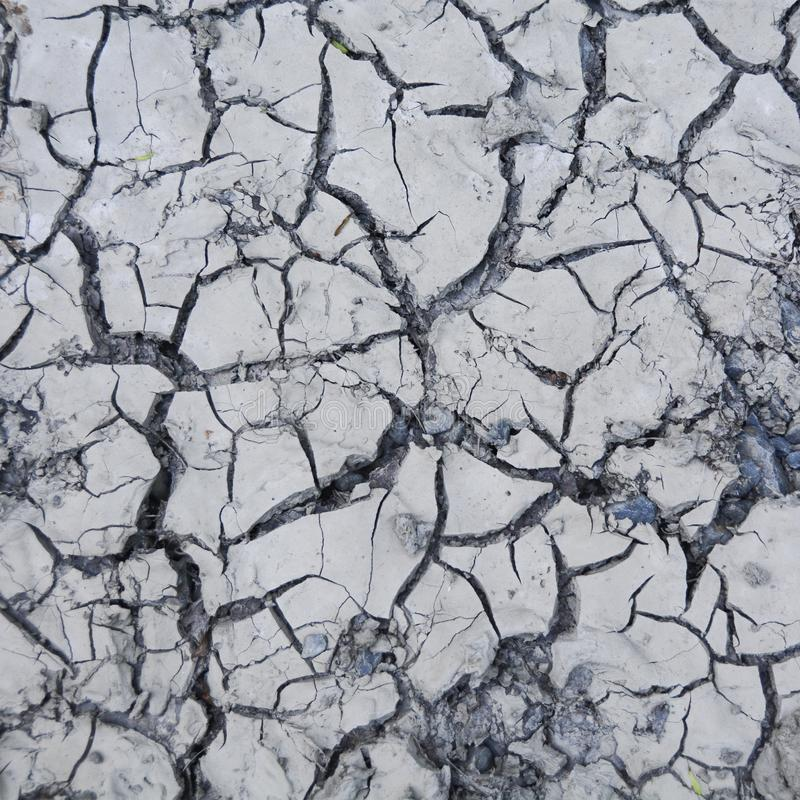 Cracked and dry  gray soil. Wallpaper, background and  patern of dry mud royalty free stock image