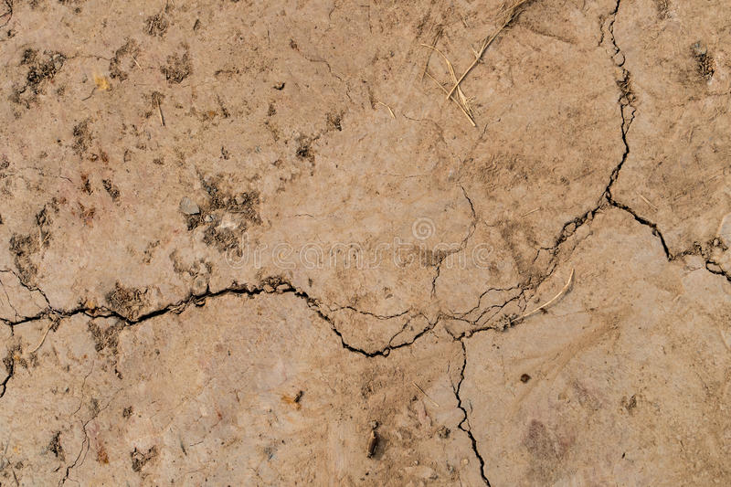 Cracked dry land stock images