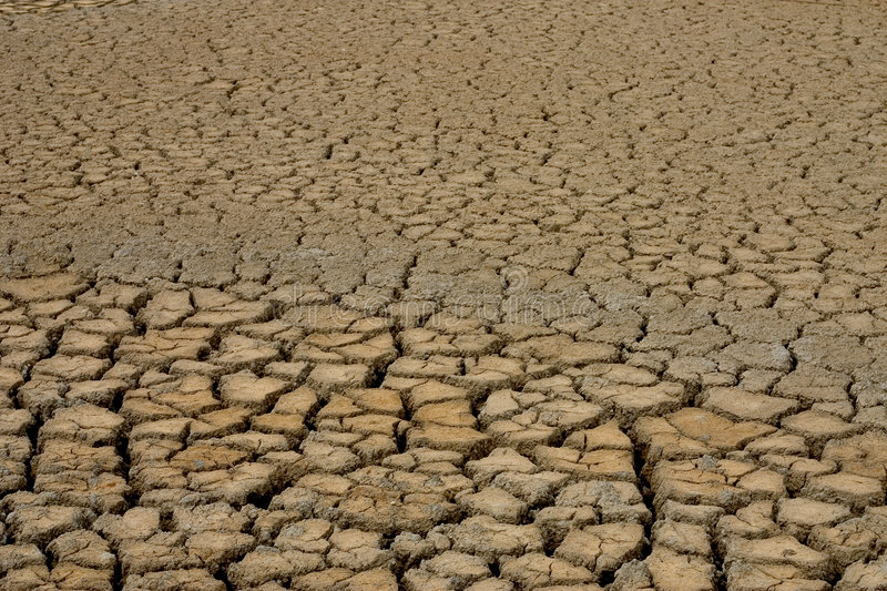 Cracked dry mud. In Gironde, France royalty free stock images