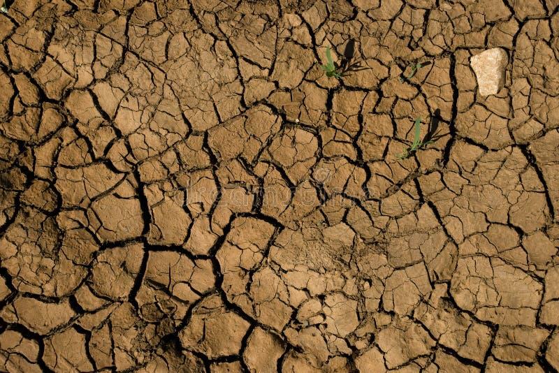 Cracked dry soil stock image