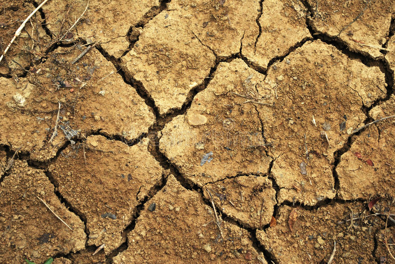 Cracked Earth. Parched, dry, cracked earth with dried plant material debris royalty free stock photos