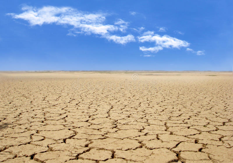 Cracked earth. Due to drought stock photography