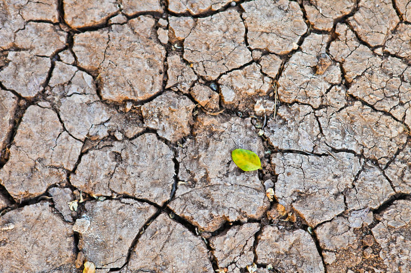 Download Cracked earth stock image. Image of dead, clay, broken - 26619039