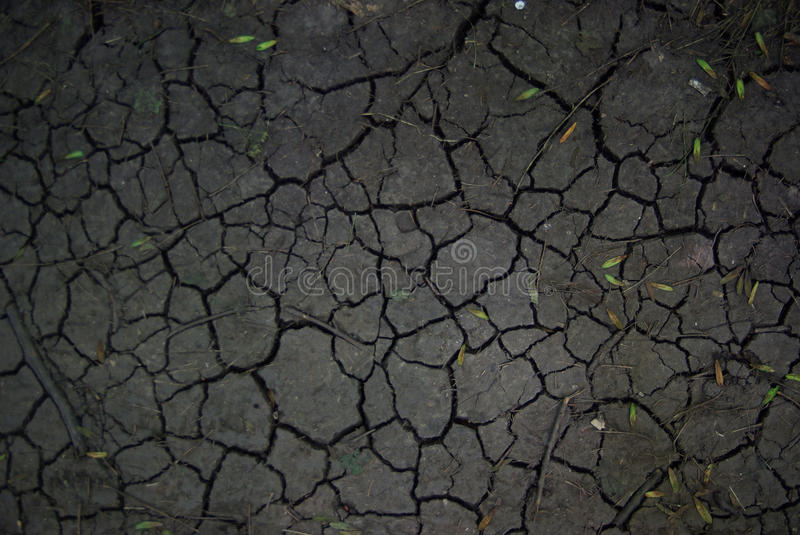 Cracked earth texture stock image