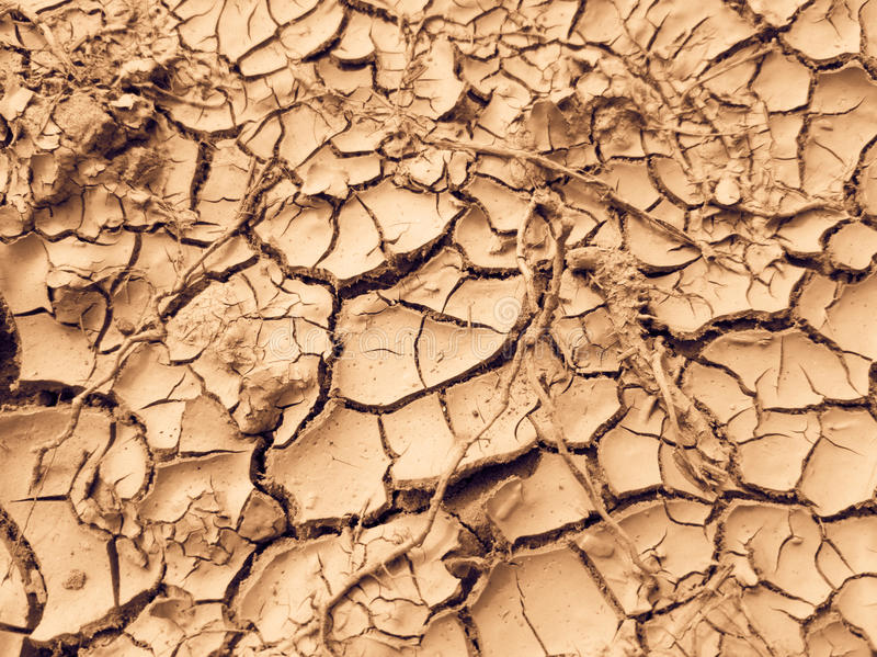 Cracked earth close up macro royalty free stock images