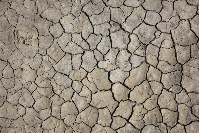 Cracked earth, cracked soil. texture of grungy dry cracking parched earth. Global worming effect stock photo