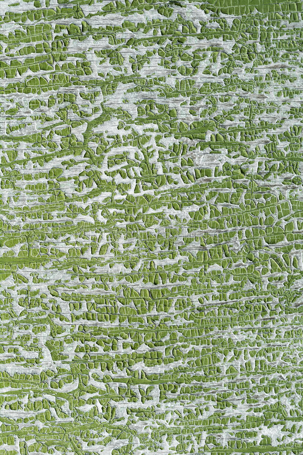 Cracked green paint surface royalty free stock image