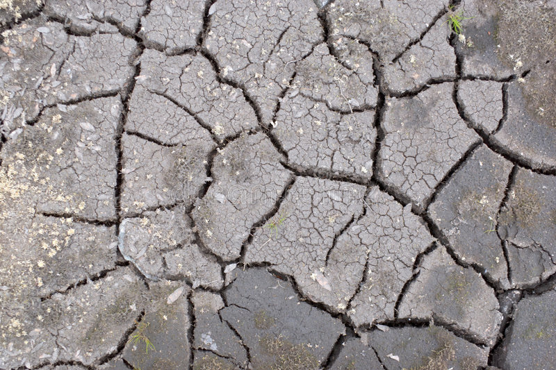 The cracked ground. The cracked surface of ground royalty free stock photos