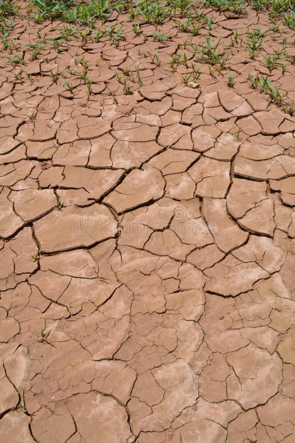 Download Cracked ground stock image. Image of dried, erosion, detail - 31581833