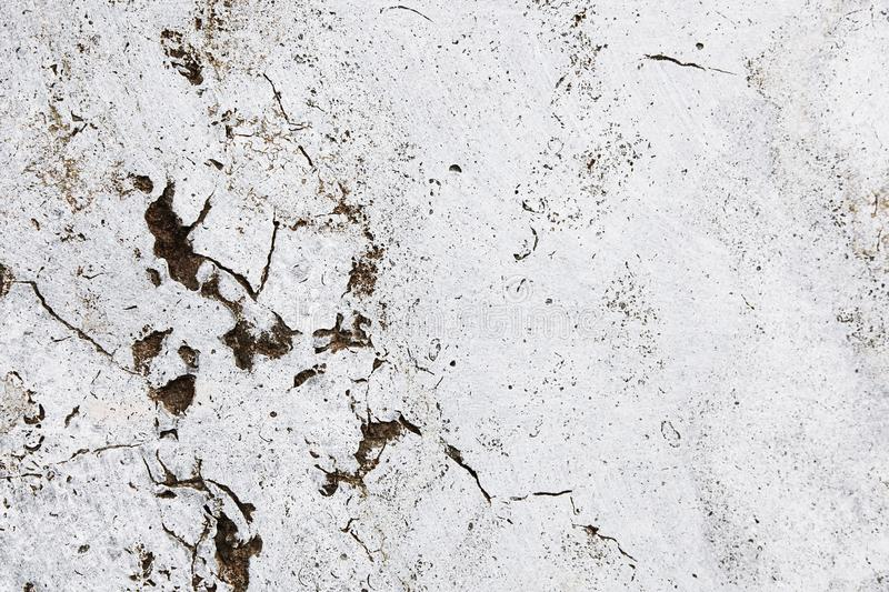 Cracked grungy white stone wall with imperfections and holes as simple texture background.  royalty free stock photos
