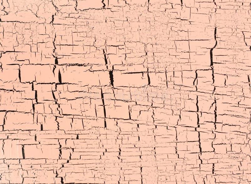 Cracked ha sopravvissuto la pittura su fondo di legno di legno rustico fotografie stock