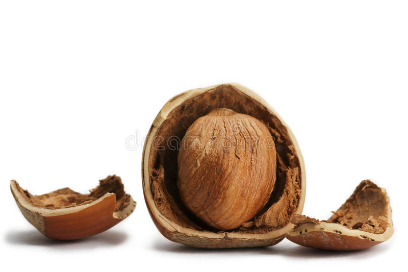 Cracked hazelnut with parts of the shell royalty free stock photo