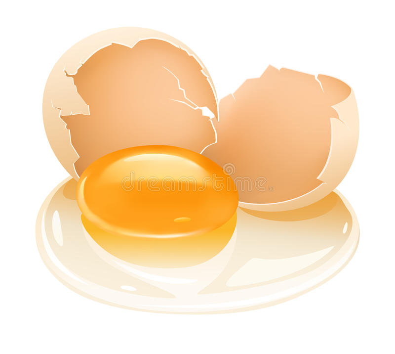 Cracked hen's egg food with yolk and albumen royalty free illustration