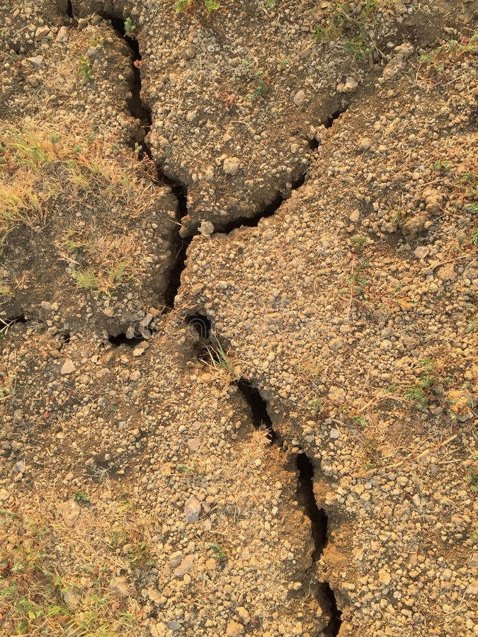 Cracked land. A cracked land in summer background royalty free stock images