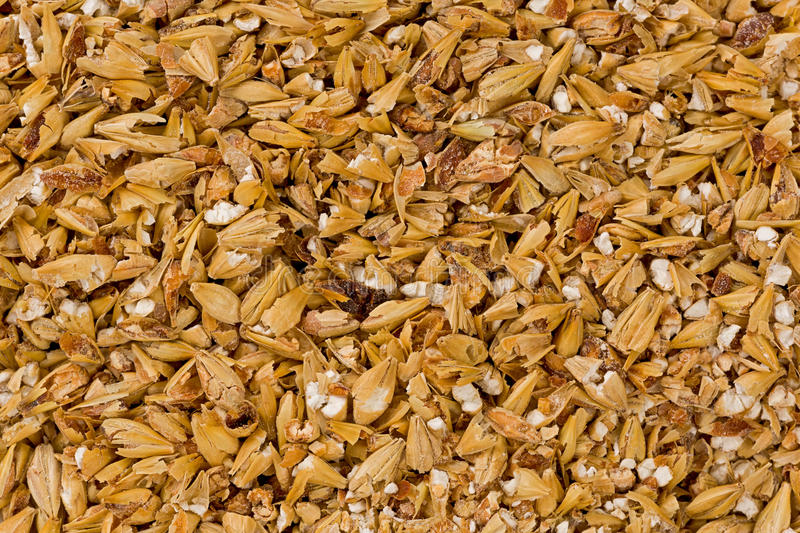 Cracked Malted Barley royalty free stock photos