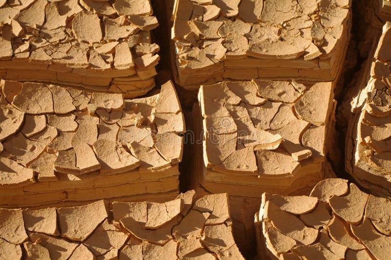 Cracked mud stock photo