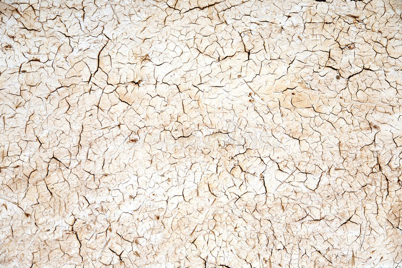 Cracked Mud Plaster Texture royalty free stock photo