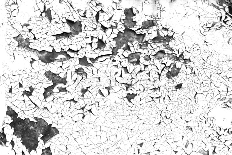 Cracked old paint contrast black and white background royalty free stock image