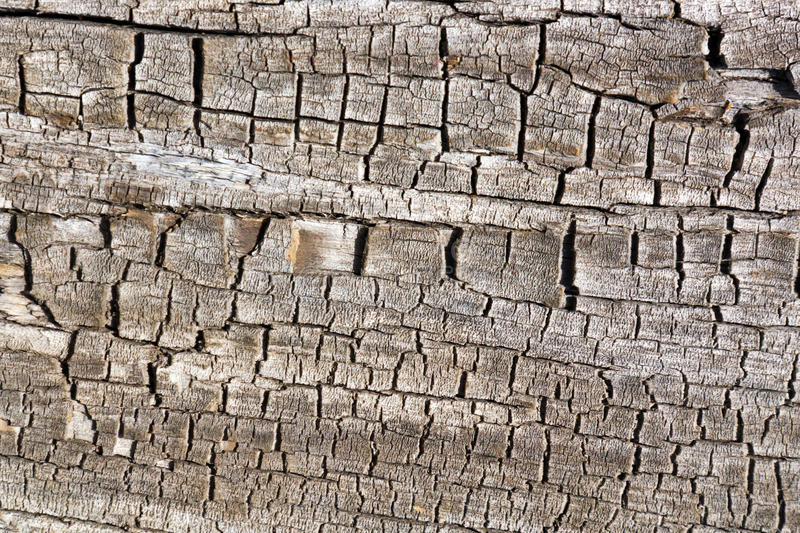Cracked Old Wood Texture Background stock images