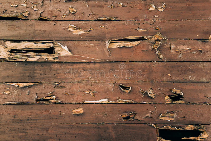 Cracked painted wood surface royalty free stock photography