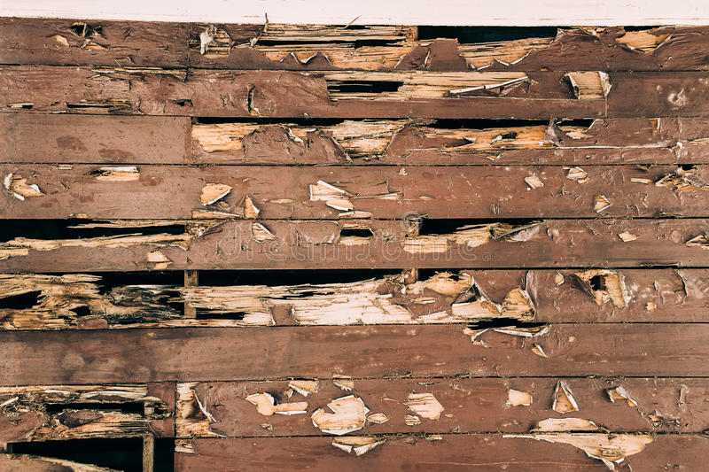 Cracked painted wood surface royalty free stock images
