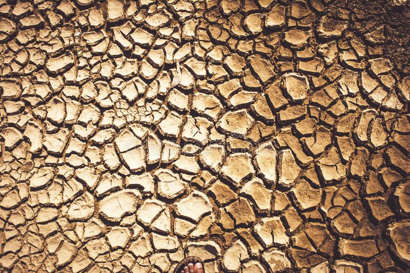 Cracked and parched earth in a lake bed. India, Cracked and parched earth in a river bed royalty free stock photo