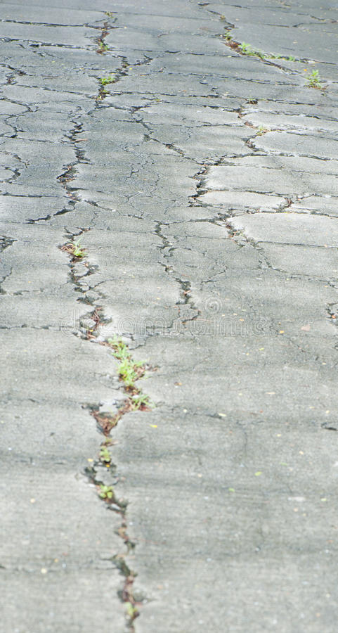 Download Cracked road stock photo. Image of deboss, damage, path - 25584650