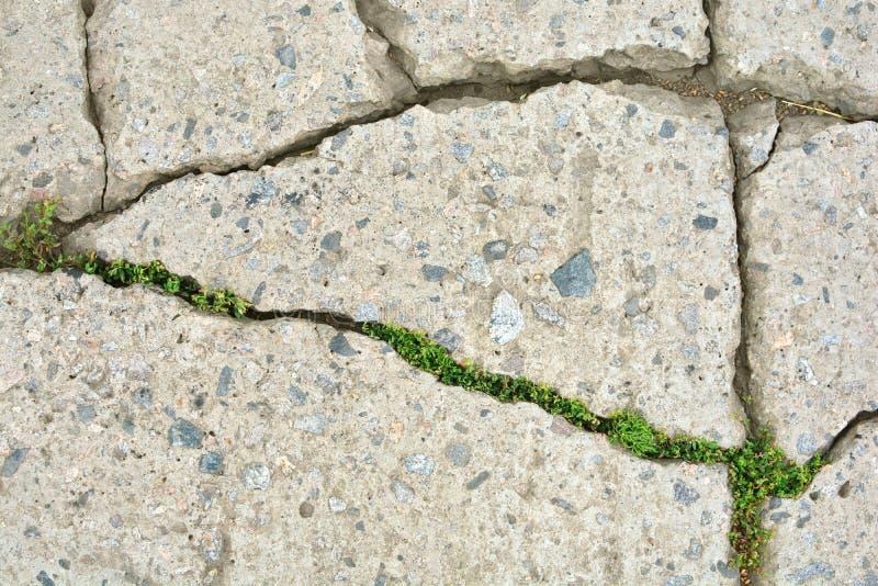 Cracked rural asphalt road background texture stock images