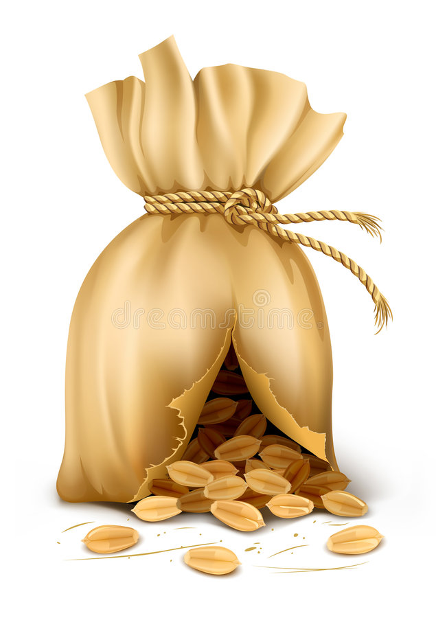 Cracked sack wired by rope with wheat corn vector illustration
