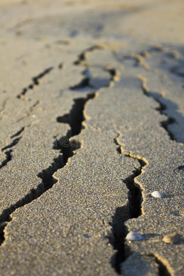 Download Cracked Sand stock image. Image of beach, background - 23876381