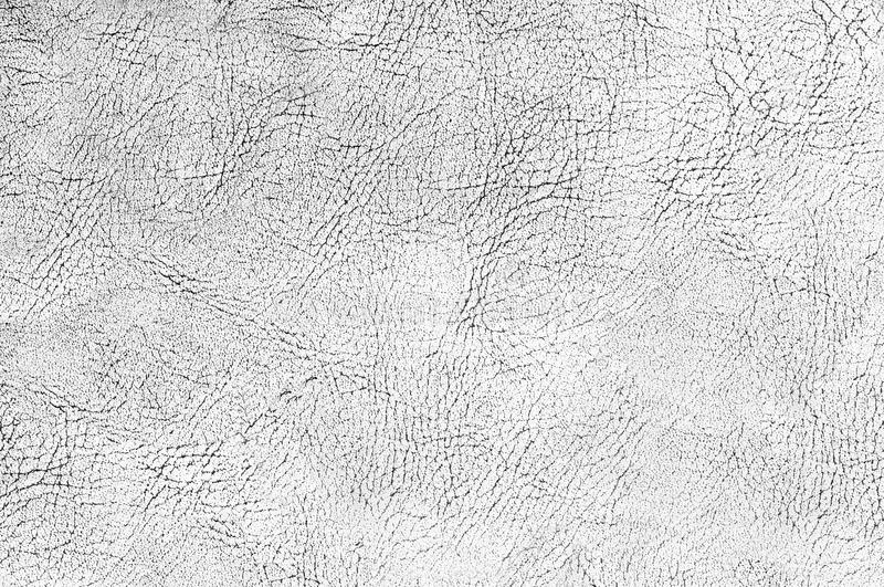 Cracked skin texture black and white. Cracked skin texture or background black and white royalty free stock images