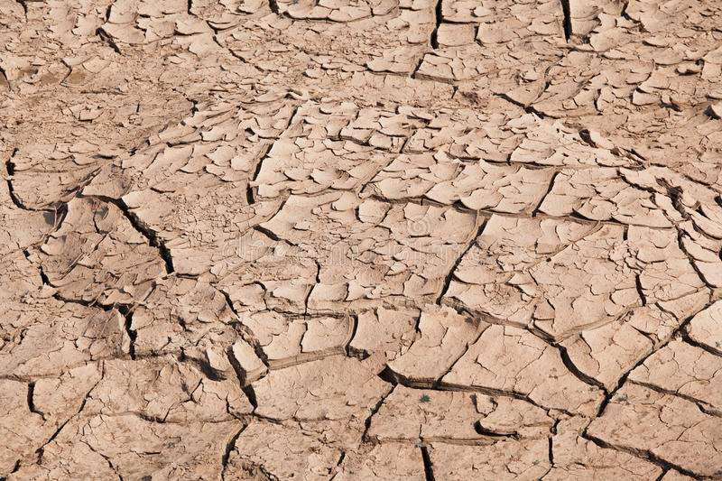 Download Cracked soil stock photo. Image of earth, clay, backdrop - 38109774