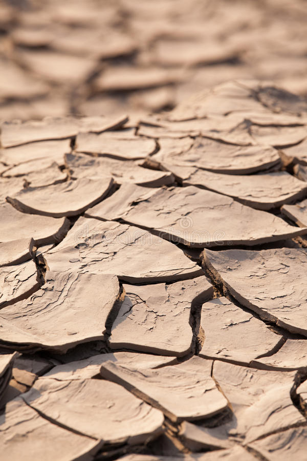 Download Cracked soil stock image. Image of environment, soil - 38111101