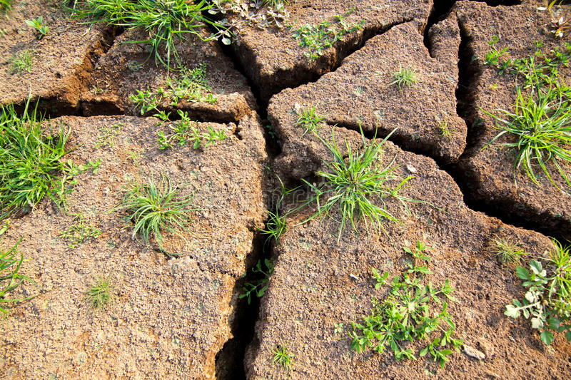 Download Cracked soil stock photo. Image of backdrop, dirt, crack - 38116880