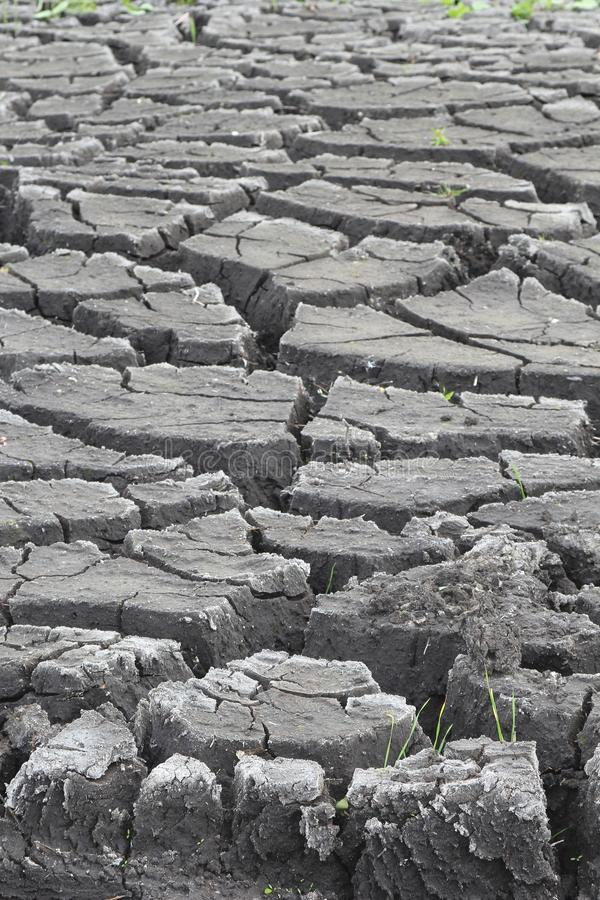 Cracked soil by erosion, artwork of nature stock photo