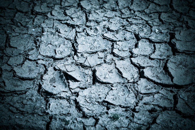 Cracked soil. Shallow depth of field. vertical shot.  royalty free stock photos