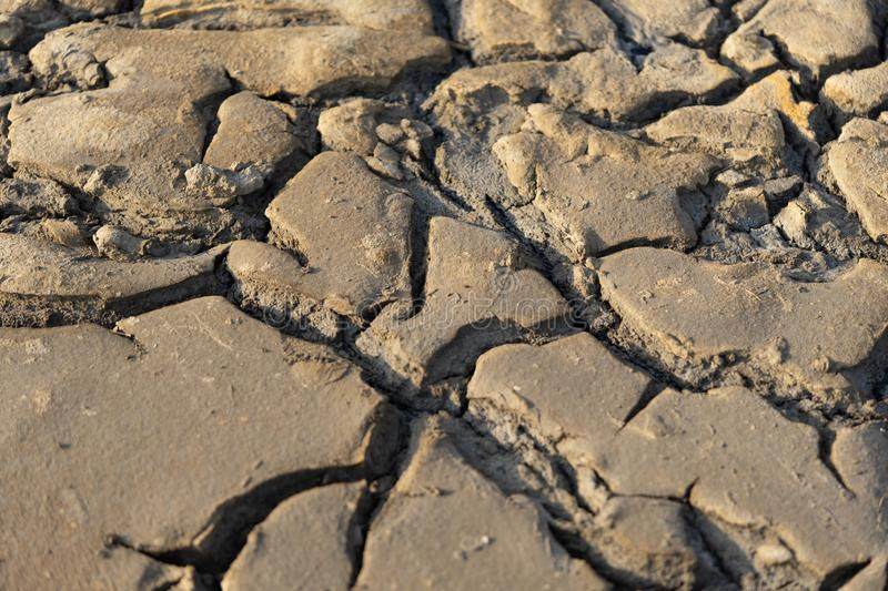 Cracked soil in the sun. Desert. Drought. Saline royalty free stock images