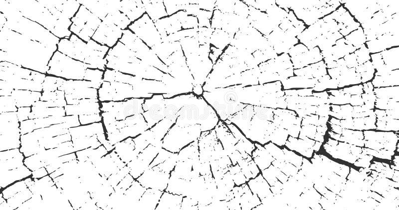 Cracked stump wood texture 4K background VWood material surface 复古效果砂砾纹理 天然木桩迹 木材 向量例证