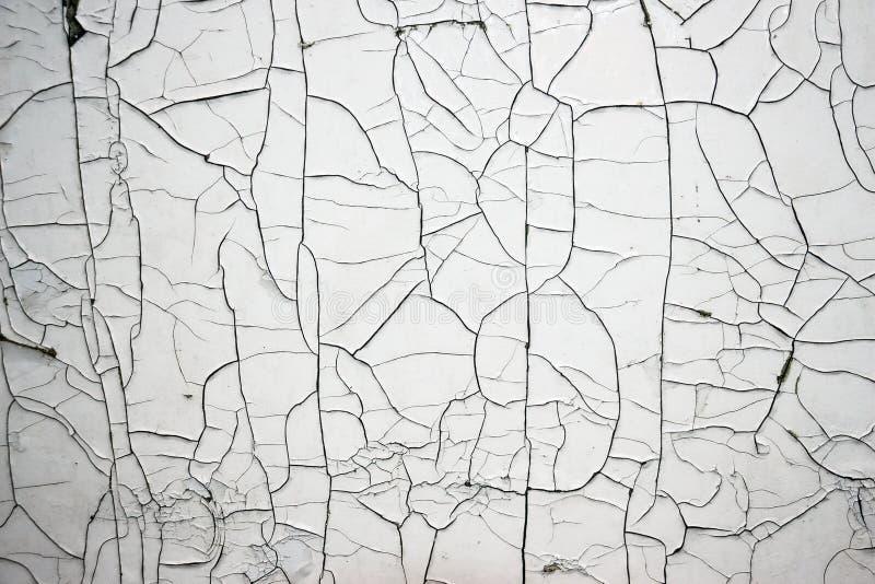 Cracked White Paint royalty free stock image